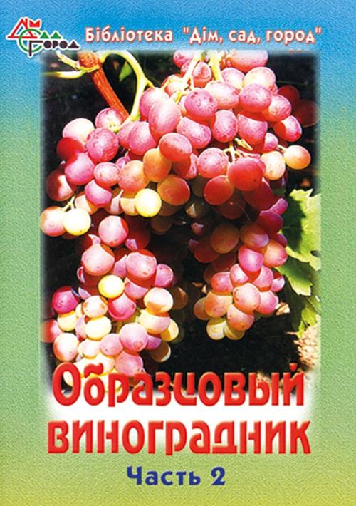 Образцовый виноградник-2
